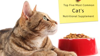 Cats Nutritional Supplement