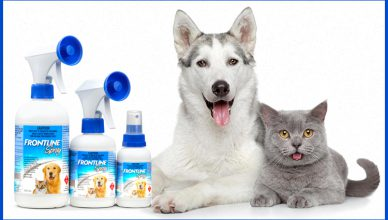 Why Frontline Spray Is Good For Your Pets - BudgetPetWorld.com