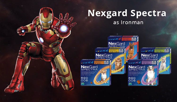 Buy Nexgard Spectra The Iron Man