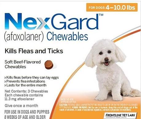 Buy Nexgard for Dogs