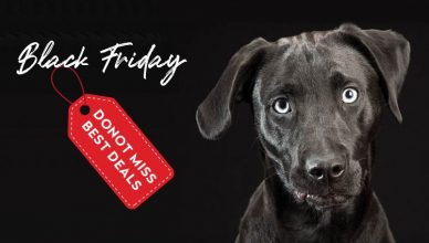 Mistakes Pet Parents Make On Black Friday