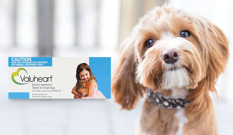 Valuheart - The Valuable Heartwormer for Dogs