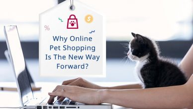 Why Online Pet Shopping Is The New Way Forward?